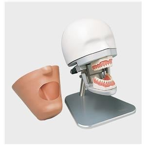 Dental Exercise Unit complete with Phantom Head P-